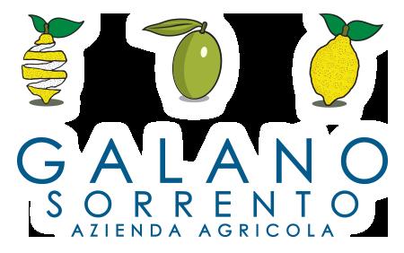 Azienda Agricola Galano Sorrento