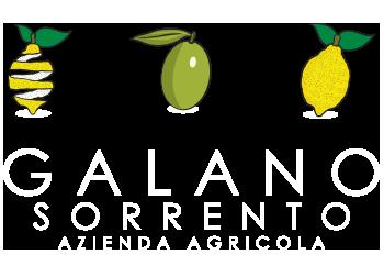 Azienda Agricola Galano – Sorrento Logo